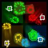Pixel Legions
